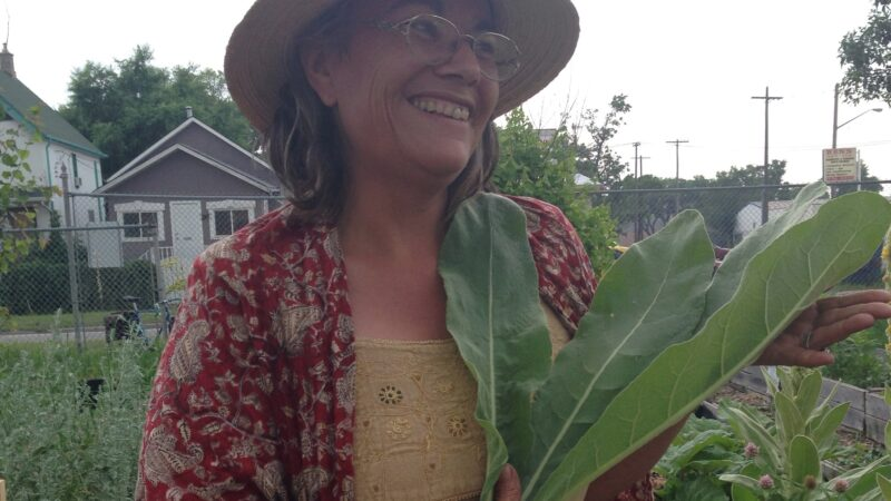 Profile Story: A Storytelling Session with Audrey Logan