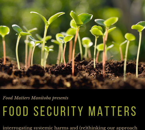 Introducing our Newest Workshop, Food Security Matters!